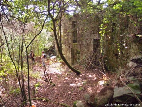 La aldea reconquistada por la naturaleza,Vichocuntín